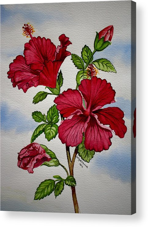 Red Hibiscus Flower Acrylic Print By Jelly Starnes