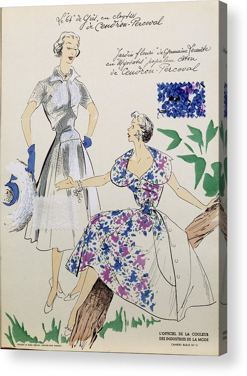 Female Acrylic Print featuring the drawing Sketches And Fabric Swatches by French School