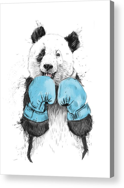 Panda Acrylic Print featuring the drawing The Winner by Balazs Solti