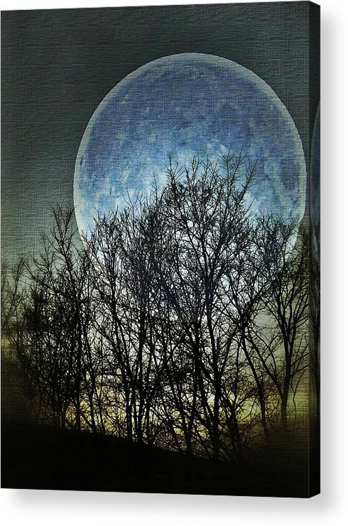 Moon Acrylic Print featuring the photograph Blue Moon by Marianna Mills