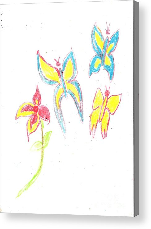 Spring Acrylic Print featuring the drawing Butterflies by Alida Cardo