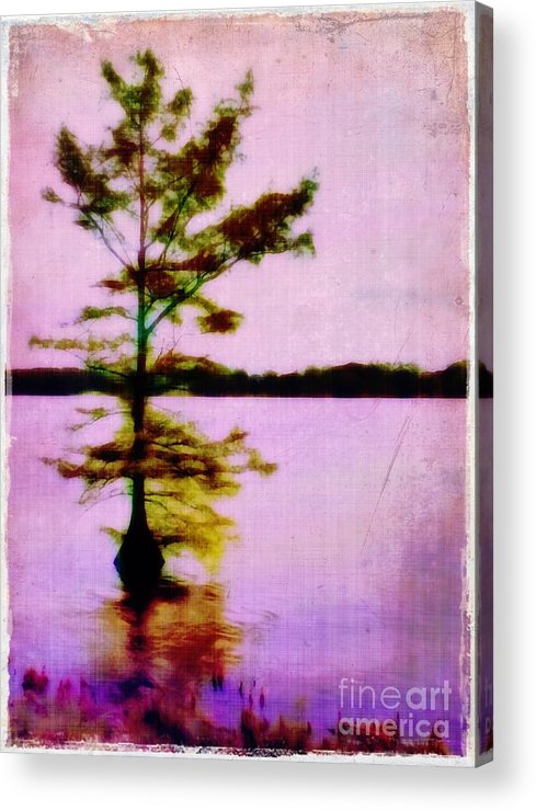 Louisiana Acrylic Print featuring the photograph Lone Cypress by Judi Bagwell