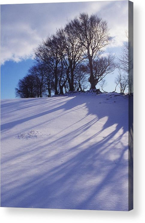 Beauty In Nature Acrylic Print featuring the photograph Winter Landscape by The Irish Image Collection