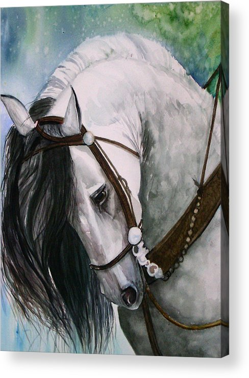 Andalusian Acrylic Print featuring the painting Renaldo by Gina Hall