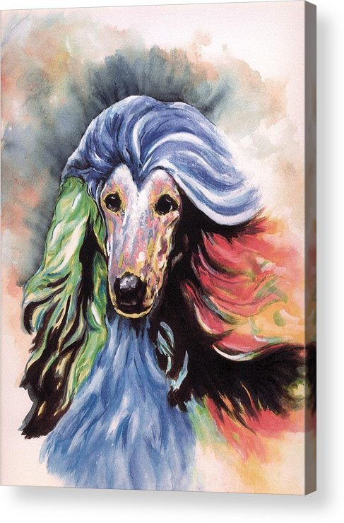 Afghan Hound Acrylic Print featuring the painting Afghan Storm by Kathleen Sepulveda
