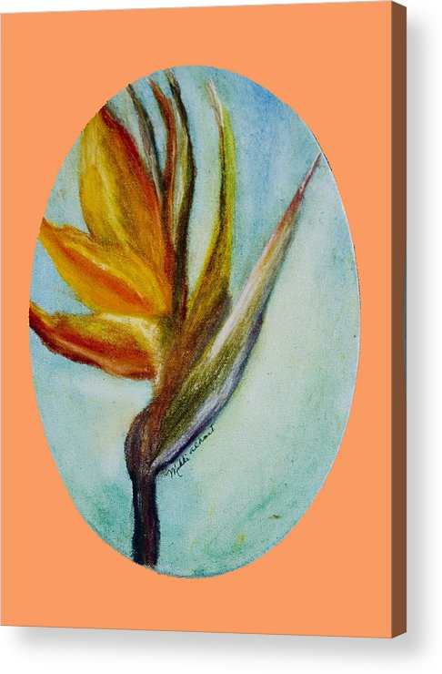 Bird Of Paridise Acrylic Print featuring the painting Bird Of Paridise by Mikki Alhart