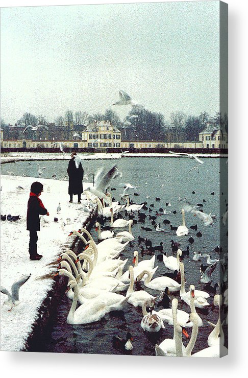 Swans Acrylic Print featuring the photograph Boy Feeding Swans- Germany by Nancy Mueller