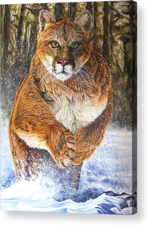 Couger Acrylic Print featuring the painting Couger by Donald Dean