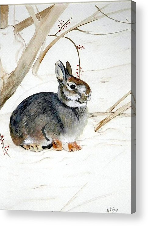 Rabbit Acrylic Print featuring the painting Early Snow by Debra Sandstrom