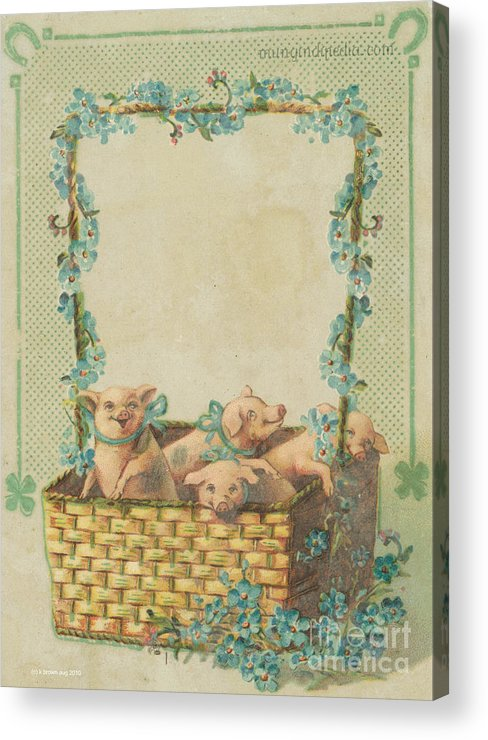 Horse Shoe Good Luck Humor Pigs Shamrock Acrylic Print featuring the mixed media Good Luck Basket With Pigs by Artist from the past