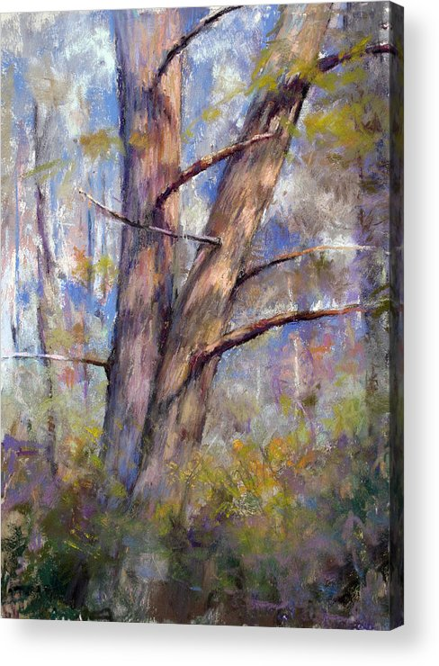 Landscapes Acrylic Print featuring the painting Happy Hour by Susan Williamson