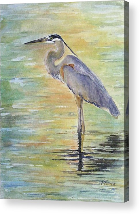 Great Blue Heron Acrylic Print featuring the painting Heron At The Lagoon by Patricia Pushaw