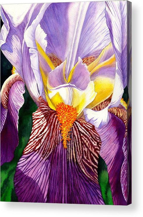 Iris Acrylic Print featuring the painting Iris by Catherine G McElroy