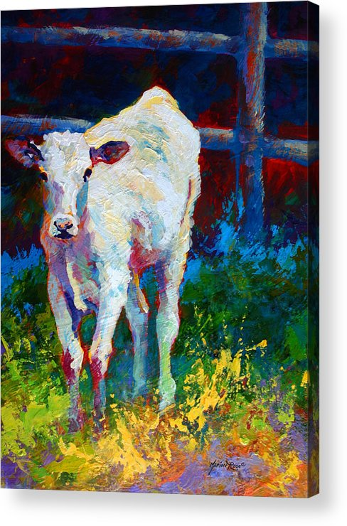 Western Acrylic Print featuring the painting Like My Daddy by Marion Rose