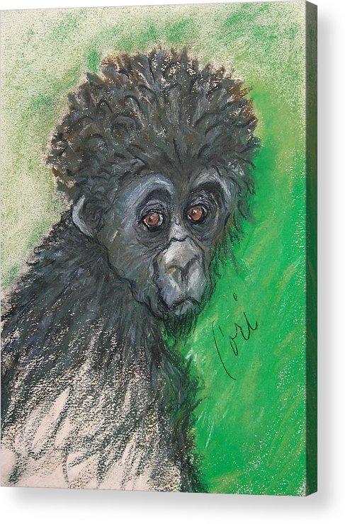 Monkey Acrylic Print featuring the drawing Monkey Business by Cori Solomon