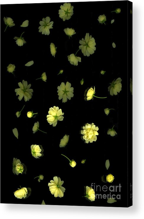 Botanicals Acrylic Print featuring the photograph Overture-first Movement by Christian Slanec