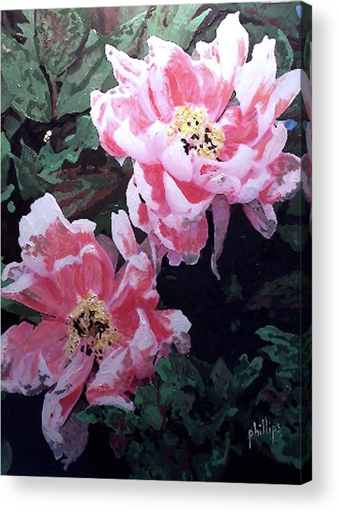 Flowers Acrylic Print featuring the painting Peony Blooms by Jim Phillips