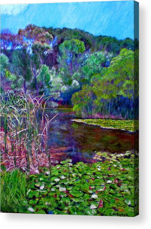 Pond Acrylic Print featuring the painting Pond Of Tranquility by Michael Durst
