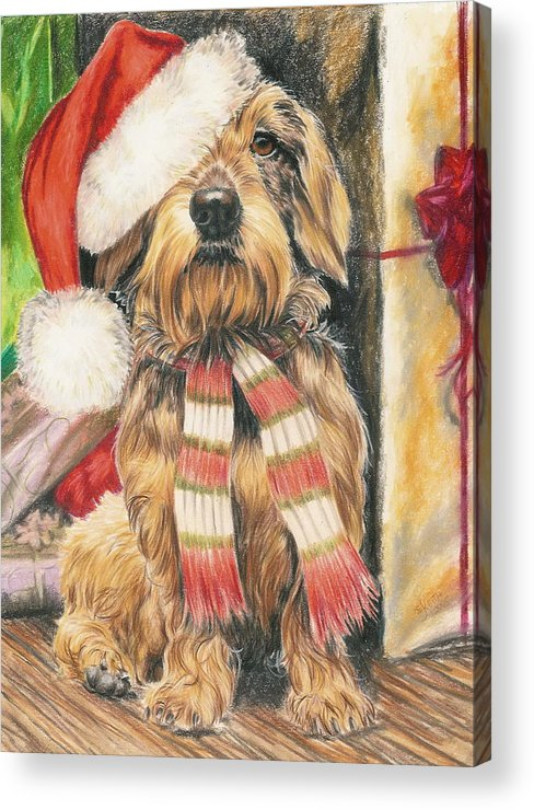 Hound Group Acrylic Print featuring the drawing Santas Little Yelper by Barbara Keith