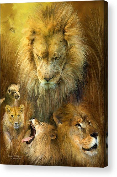 Carol Cavaoaris Acrylic Print featuring the mixed media Seasons Of The Lion by Carol Cavalaris