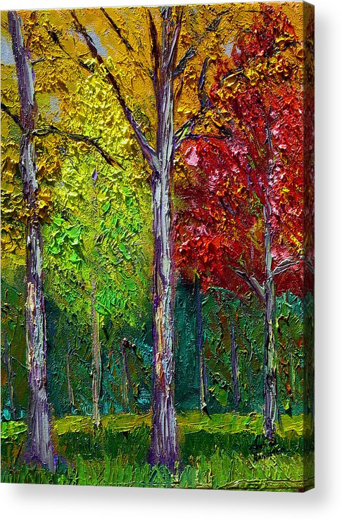 Fall Acrylic Print featuring the painting Sewp Fall by Stan Hamilton