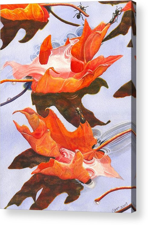 Leaf Acrylic Print featuring the painting Sinking Feeling by Catherine G McElroy
