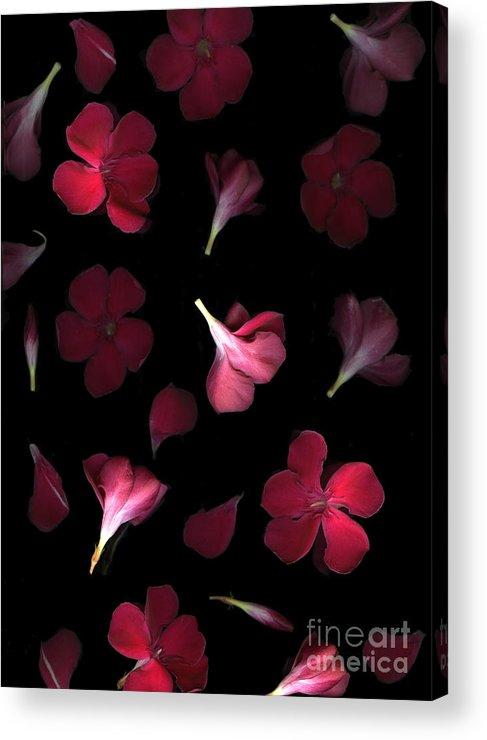 Cslanec Acrylic Print featuring the photograph Spring by Christian Slanec