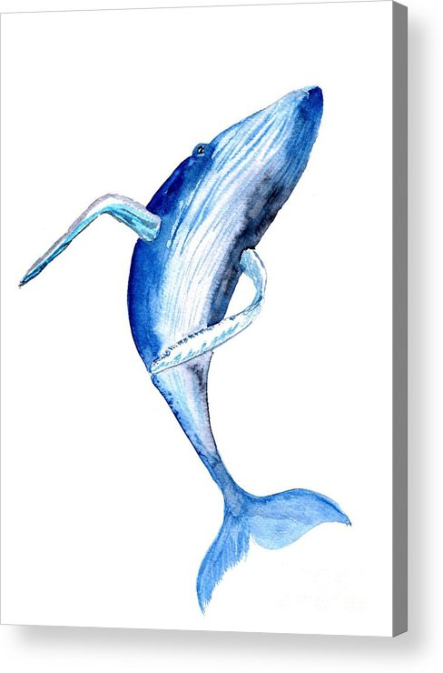Humpback Whale Acrylic Print featuring the painting Whale 4 by Sweeping Girl