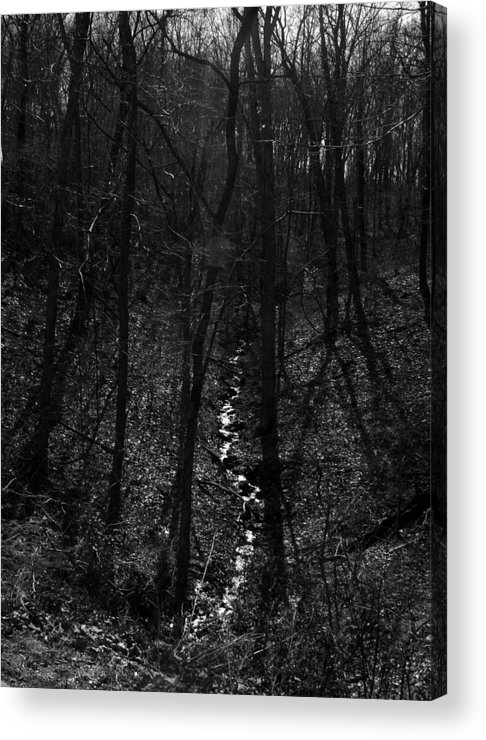 Ansel Adams Acrylic Print featuring the photograph White Rriver Headwater by Curtis J Neeley Jr