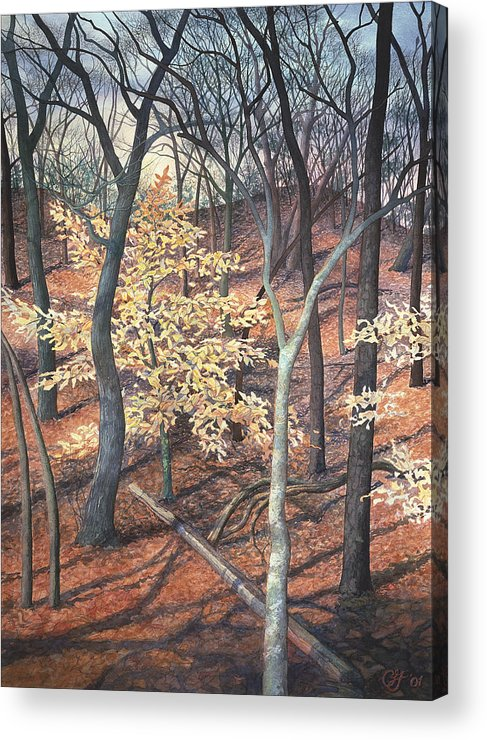 Trees Acrylic Print featuring the painting Winter Beech by Craig Gallaway