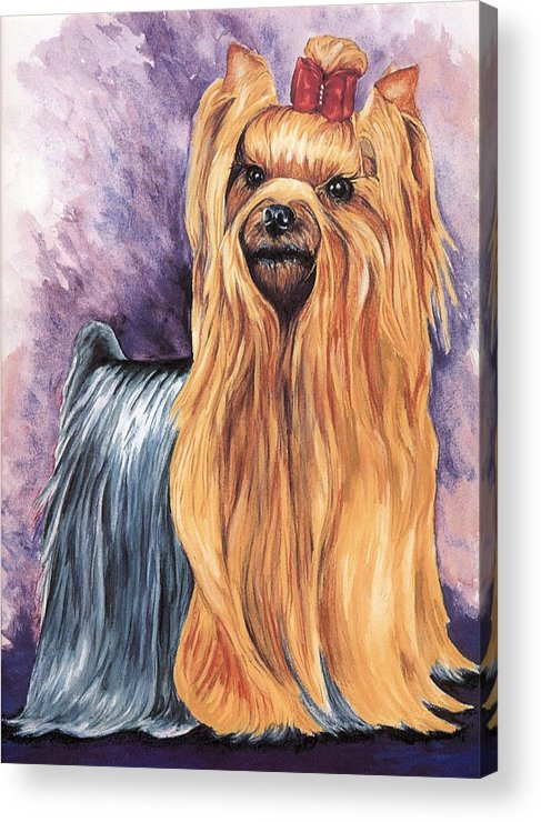 Yorkshire Terrier Acrylic Print featuring the painting Yorkshire Terrier by Kathleen Sepulveda