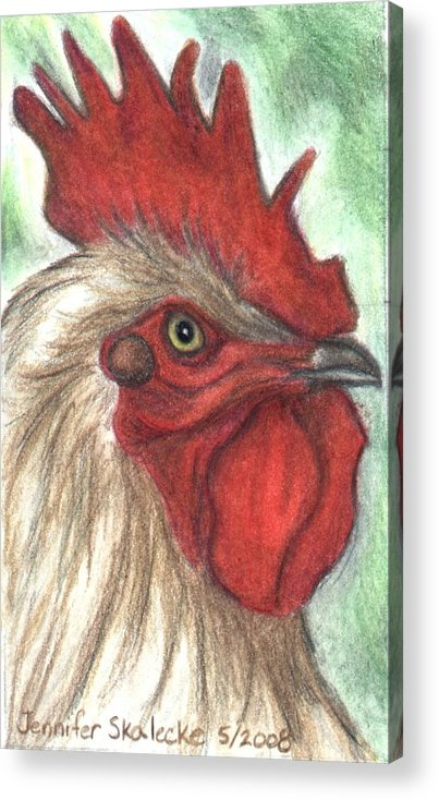 Rooster Acrylic Print featuring the drawing Proud by Jennifer Skalecke