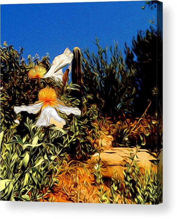 Flowers Acrylic Print featuring the photograph Flowers In Abstract 15 by Kristalin Davis