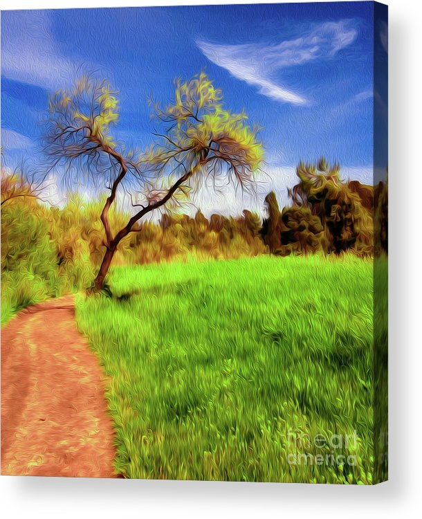 Archival Quality Prints Acrylic Print featuring the digital art The Path That Lies Ahead by Kenneth Montgomery