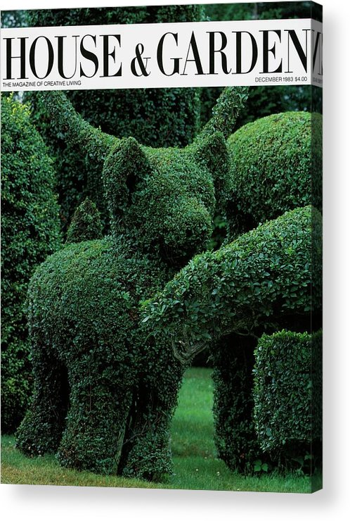 Animal Acrylic Print featuring the photograph A Topiary Bear In Alice Braytons Green Animals by Horst P. Horst