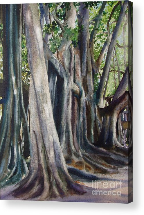 Trunks Acrylic Print featuring the painting Banyan Trees by Karol Wyckoff