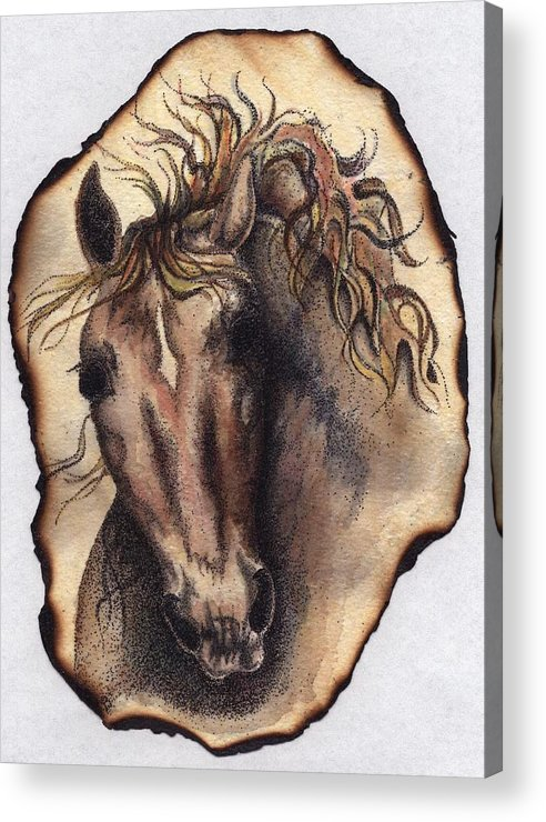 Horses Acrylic Print featuring the painting Burned Art by Jodi Bauter