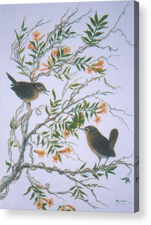 Bird; Flowers Acrylic Print featuring the painting Carolina Wren And Jasmine by Ben Kiger