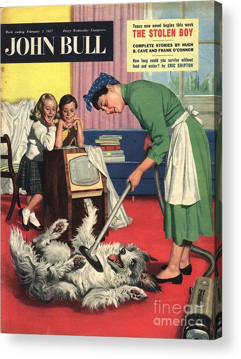 1950�s Acrylic Print featuring the drawing John Bull 1957 1950s Uk Dogs Cleaning by The Advertising Archives