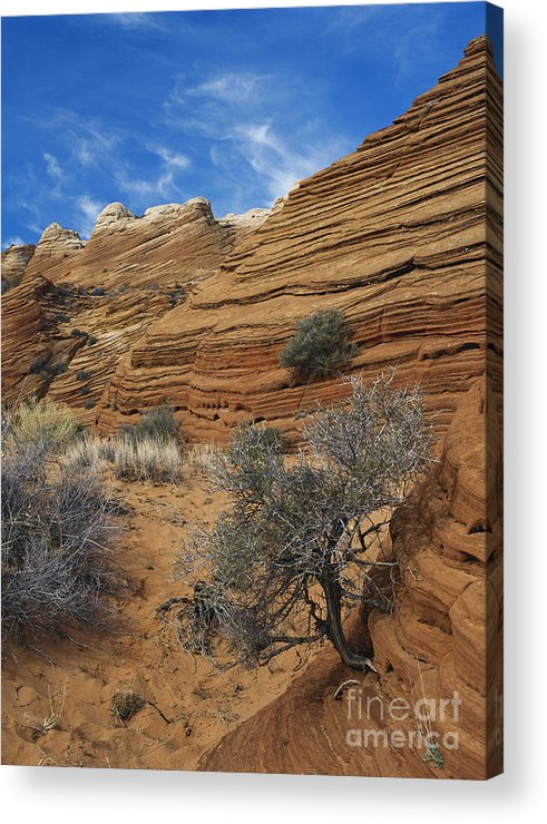 Sandstone Acrylic Print featuring the photograph Layered Sandstone by David Davis
