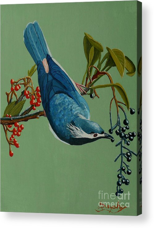 Bird Acrylic Print featuring the painting Lunch Time For Blue Bird by Anthony Dunphy