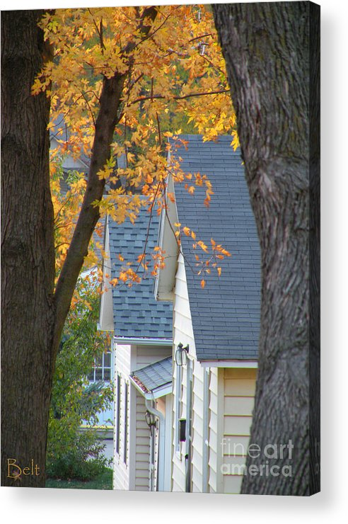 Autumn Acrylic Print featuring the photograph Autumn In America IIi by Christine Belt