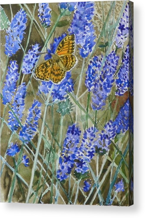 Butterfly Acrylic Print featuring the painting Queen Of Spain Fritillary And Lavender by Marty Bielefeldt