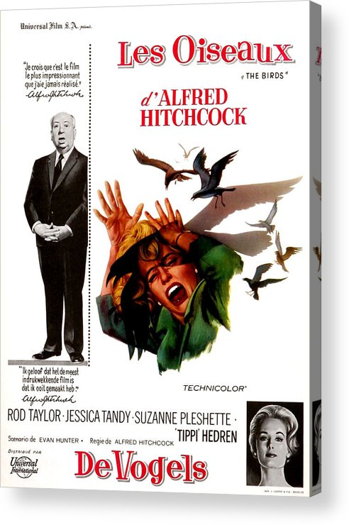 1960s Portraits Acrylic Print featuring the photograph The Birds, Aka Alfred Hitchcocks The by Everett