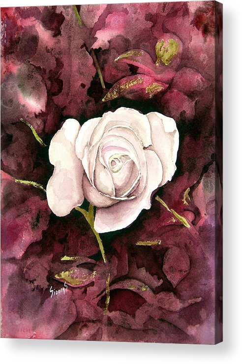 Flower Acrylic Print featuring the painting A White Rose by Sam Sidders