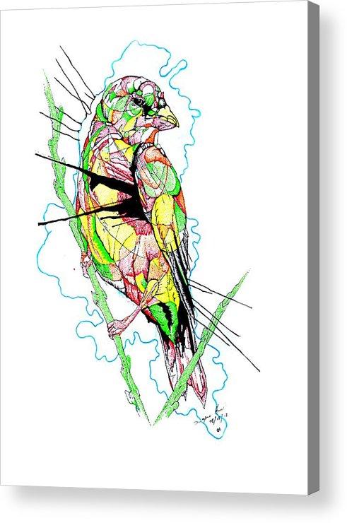 Birds Acrylic Print featuring the mixed media Abstract Bird 01 by Dwayne Hamilton