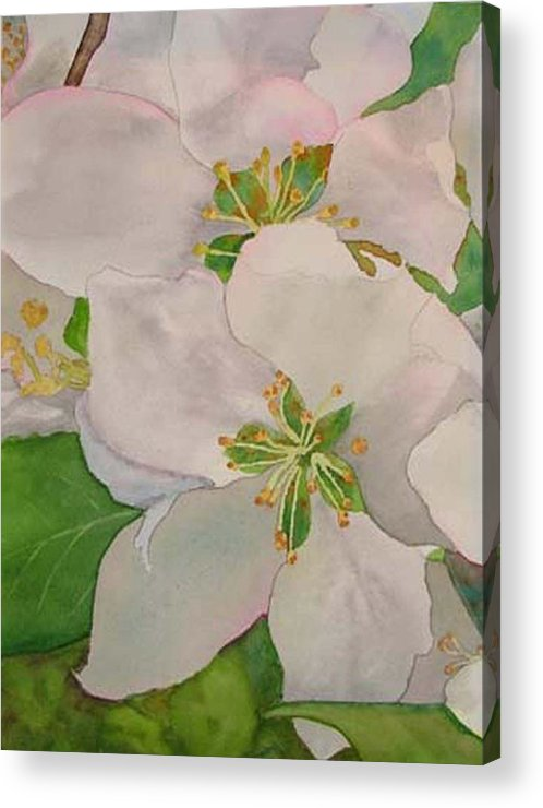 Apple Blossoms Acrylic Print featuring the painting Apple Blossoms by Sharon E Allen