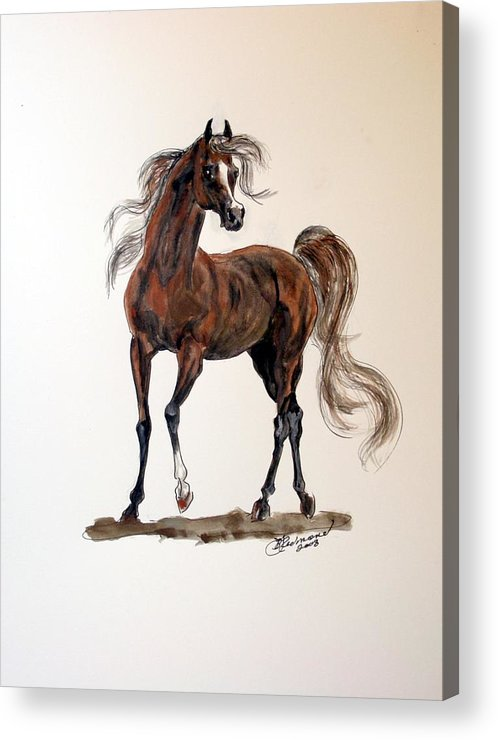 Arabian Acrylic Print featuring the painting Arabian by BJ Redmond