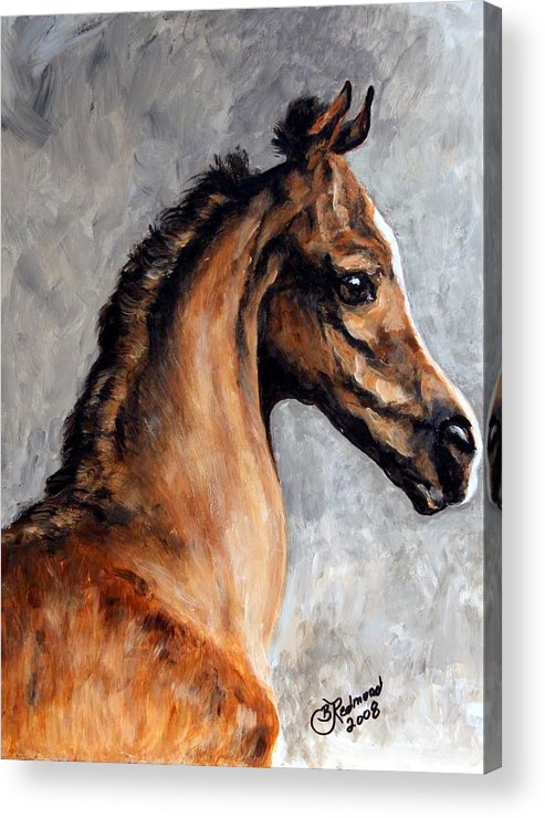 Horse Acrylic Print featuring the painting Arabian Foal by BJ Redmond
