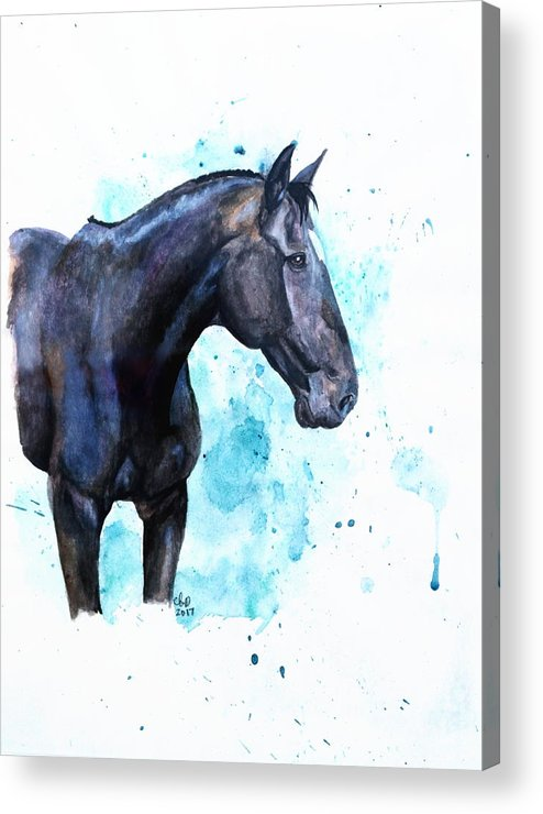 Brodie Acrylic Print by Amber Dennis